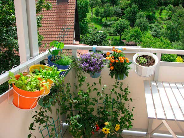 Eco-Friendly Apartment | Learning to Live Green