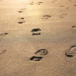 Top Tips for Reducing your Family's Environmental Footprint