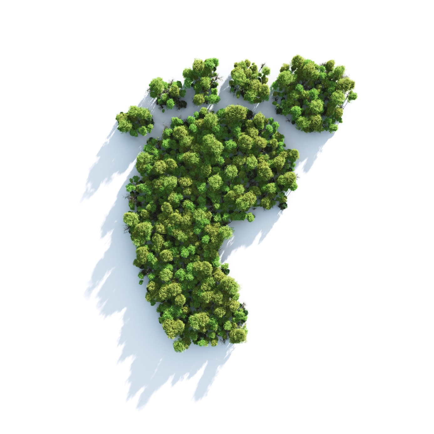 Carbon Footprint | Green Plants Shape of Foot
