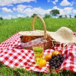 Your Eco-Friendly Picnic