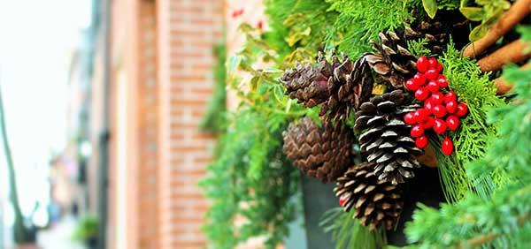 Environmentally-Friendly | Green Holiday Tips