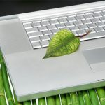 Your Eco-Friendly Office Event