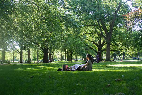 Green Labor Day Tips | Summer Picnic in Green Park London