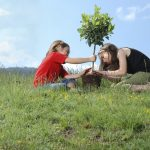 Environmental Community Service Ideas for Kids