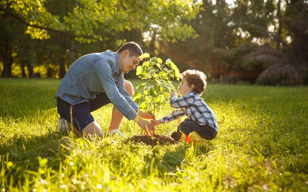 Celebrate Love A Tree Day