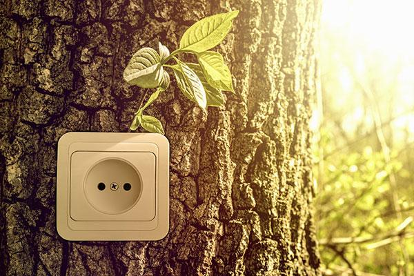Electricity Renewable Power | plug-image