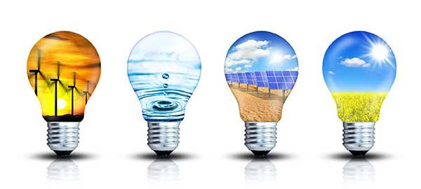 Energy Renewable - Lightbulbs Illustration
