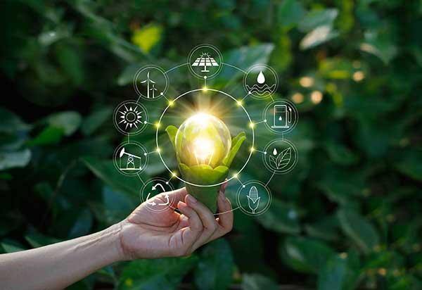 Green Efforts | New Innovative Solutions