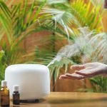 Humidifiers: Why We Need Them, How They Work, and Other FAQs